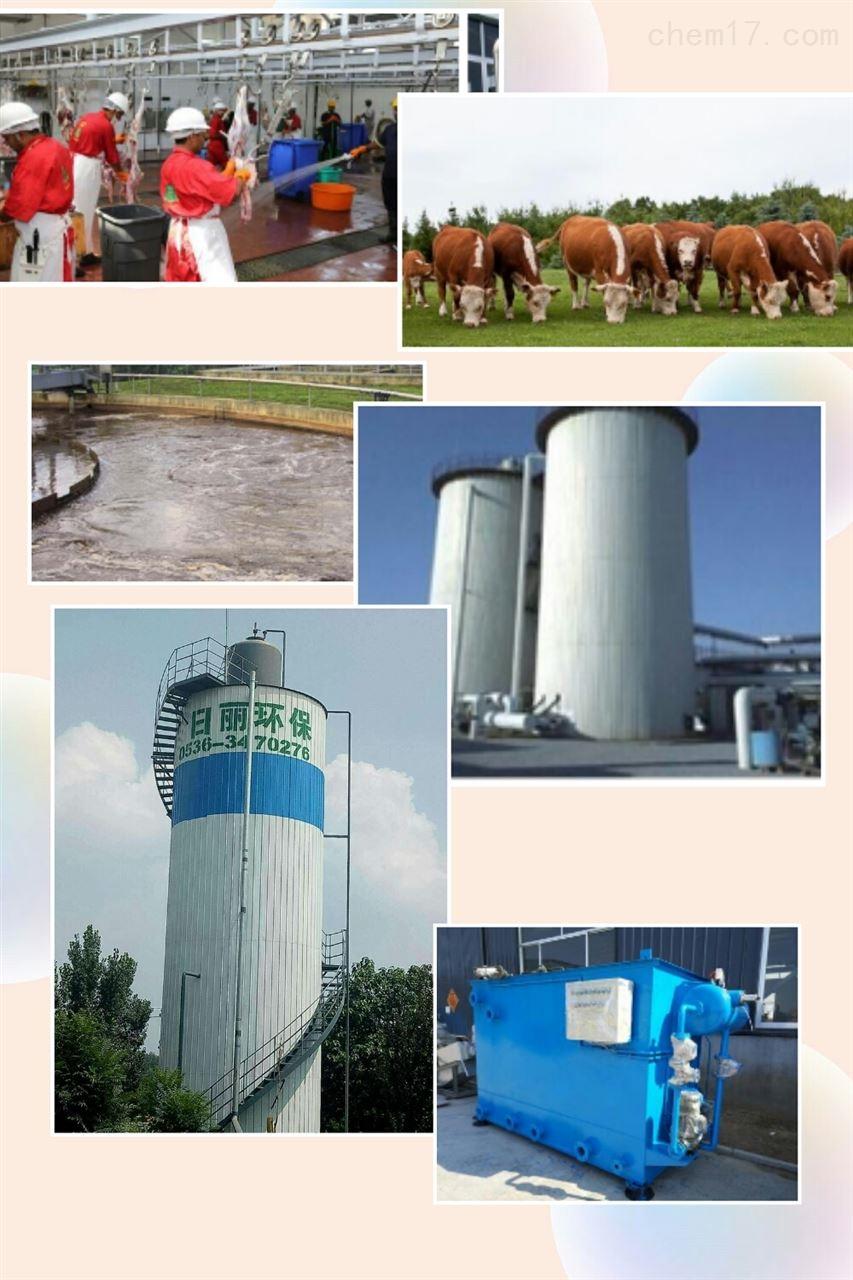 自贡肉牛养殖污水处理设备RL-UASB反应器