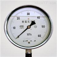 耐震压力表0-1.6Mpa表头100