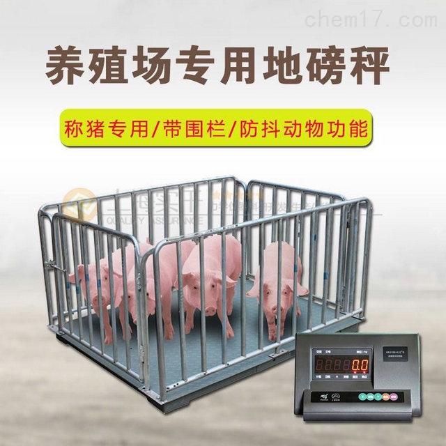 供应称猪的地磅 称猪用畜牧地磅