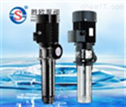 CDL/CDLF浸入式多級泵