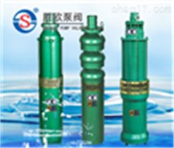 QS型号充水式潜水电泵