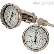 抽心式雙金屬溫度計