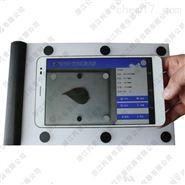 YMJ-CH智能叶面积测量系统 叶面测定仪系统