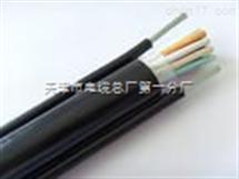 KVVP22-8*1.0控制电缆