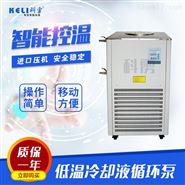 上海科雳低温冷却液循环泵 制冷泵