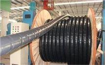 阻燃计算机屏蔽电缆ZR-DJYVPR