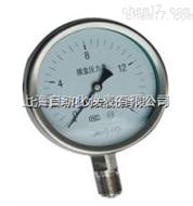 YE-100BYE-100B不锈钢膜盒压力表 0-1Mpa