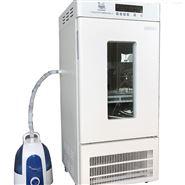 LRH-100-S恒温恒湿箱(食品加工无菌试验)