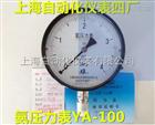 YZA-100真空氨用壓力表 0-0.1Mpa