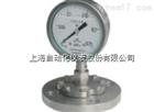 YTP-100-ML隔膜压力表0-0.25Mpa