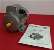 ZIK紫光MS三相异步电动机 中研技术