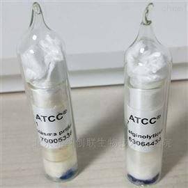 ATCC 14028肠炎沙门氏菌肠炎亚种鼠伤寒血清型ATCC菌种