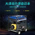 YOMO-190GT大泽190A柴油发电焊机