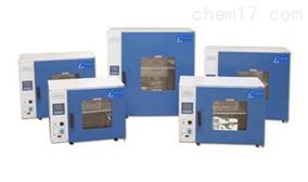DHG-101-2A选配智能型电热恒温鼓风干燥箱