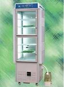 RXZ-380B人工气候箱