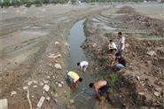蚌埠湖泊清淤固化公司施工队伍