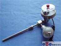 WSSX-481万向型电接点双金属温度计