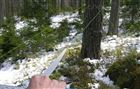 GatorEyes林业激光测径仪 远距离直径测量尺