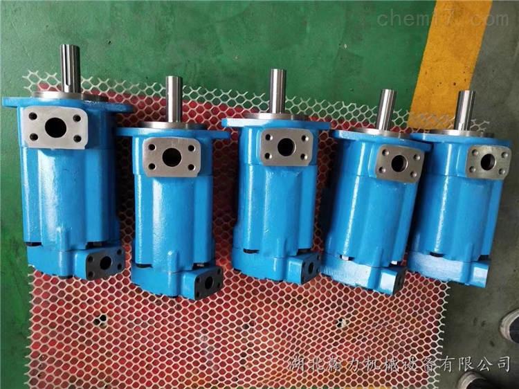 T6DC 028 017 2R03 C100丹尼逊DENISON叶片泵