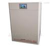 二氧化碳培养箱 CO2试验箱