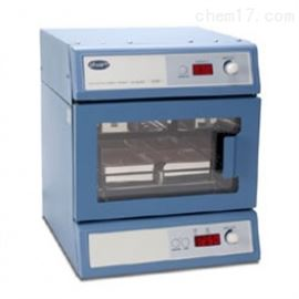 SI505英国Stuart微孔板震荡培养箱