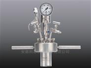 机械搅拌反应釜