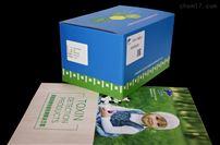 抗体细纯化试剂盒