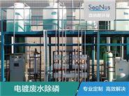 电镀废水次磷去除剂