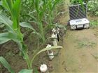 FDR-100D多点土壤水分速测仪 土壤湿度计