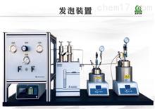 SL201901809CO2发泡反应釜系统