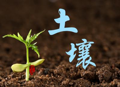 云南省召开土壤污染详查工作调度会 四个环节缺一不可