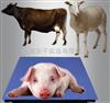 称猪用的秤/称猪地磅秤/称猪平台秤