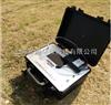 臭气仪 移动式恶臭浓度探测仪SQC208