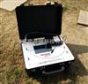 SNC2000-WDR 钻井平台气体安全检测仪