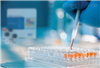 CD3T淋巴细胞亚群CD3 ELISA 试剂盒