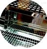 Labonce-1000CGS药品稳定性试验箱