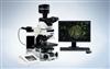 BX63奥林巴斯操作、多动能显微镜