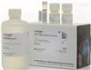 Invitrogen核酸定量分析试剂盒Q32854现货