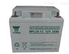 汤浅长寿命蓄电池NPL38-12