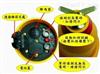 接触式高压验电器接触式高压验电器